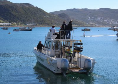 Adventure activities - Apex - Simonstown0019