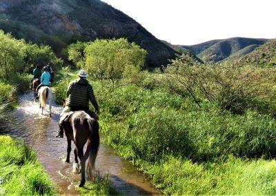 Baviaans Camino
