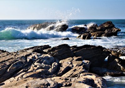 Cape Point Hiking Trail-Olifantsbos-Weekend---Feb-20180035