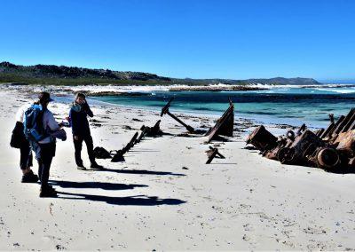 Cape Point Hiking Trail-Sirkelsvlei-Circuit-_-Shipwreck0014