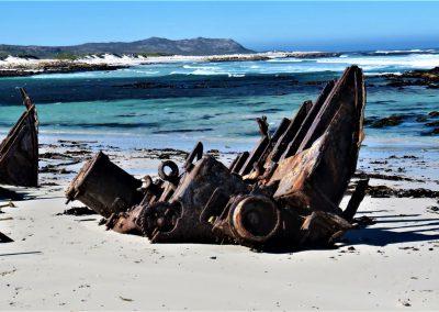 Cape Point Hiking Trail-Sirkelsvlei-Circuit-_-Shipwreck0015