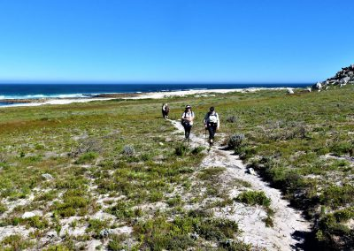 Cape Point Hiking Trail