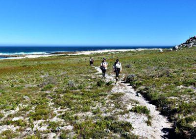 Cape Point Hiking Trail-Sirkelsvlei-Circuit-_-Shipwreck0021