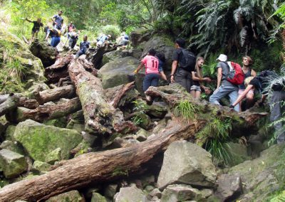 Day-Hikes-Kirstenbosch-Aquaduct-Meridian_0006
