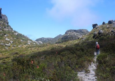 Day-Hikes-Kirstenbosch-Aquaduct-Meridian_0039
