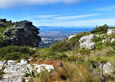 Day-Hikes-Kirstenbosch-Back-Table-0001