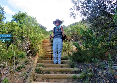 Day-Hikes-Kirstenbosch-Back-Table-0007