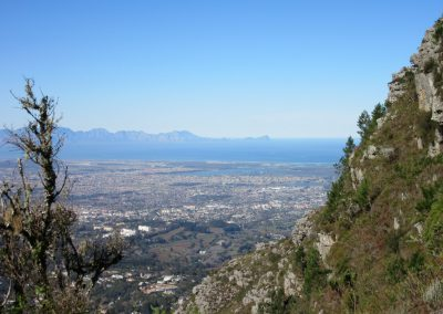 Day-Hikes-Kirstenbosch-Skeleton-and-Backtable-Meridian-0043