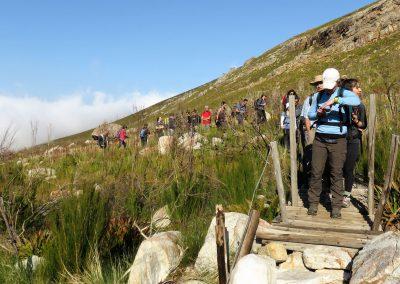 Day-Hikes-Uitkyk-Trail-Uitkyk-Trail-014