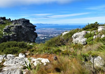 Table Mountain Trail OPT0001