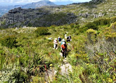 Table Mountain Trail OPT0010