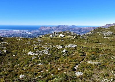 Table Mountain Trail OPT0017