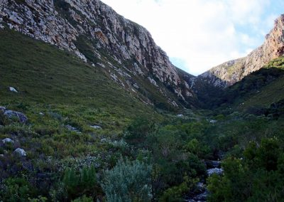 Cape Country - Palmiet River Trail