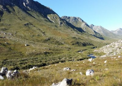 Cape Country - Palmiet River Trail-12
