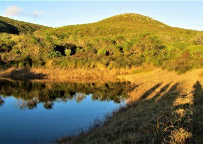 Fynbos Trail Opt0003