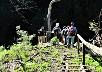 Fynbos Trail Opt0009