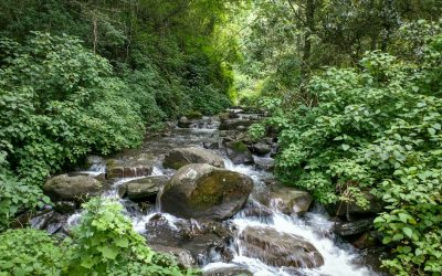 Karkloof Falls2Falls Trail