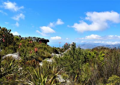 Mutli-day trails - Table Mountain Trail