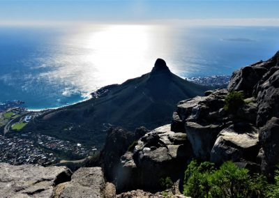 Table Mountain - Lion's Head
