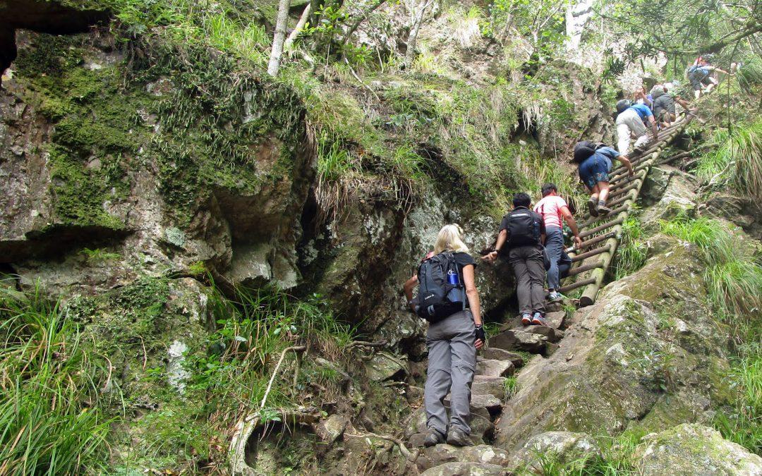 Table Mountain via Skeleton Gorge