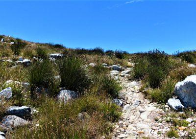 Uitkyk Trail