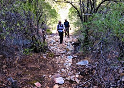 Tierkloof-Trail