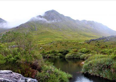 Cape Country - Palmiet River Trail