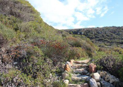 Cape of Good Hope - Buffelsfontein - Kanonkop Circuit